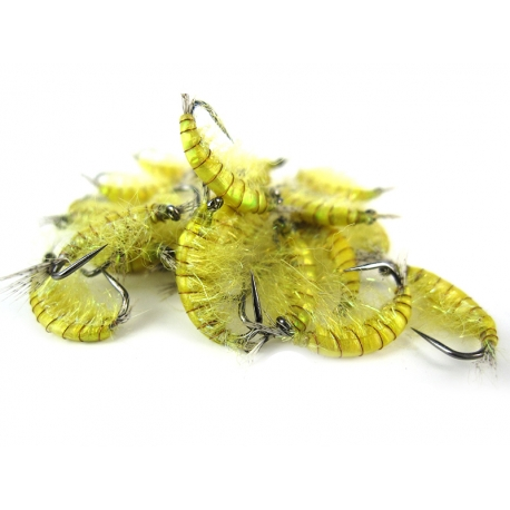 Gammarus Holo Yellow