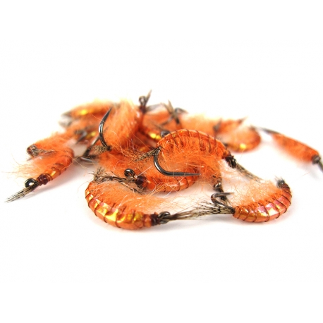 Gammarus Holo Orange
