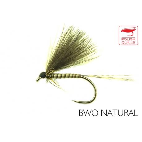BWO Natural