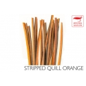 Polishquills Stripped Quill Orange