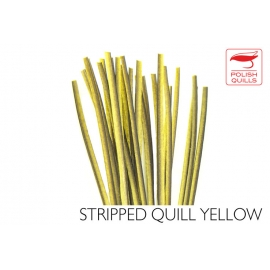 Polishquills Stripped Quill Yellow