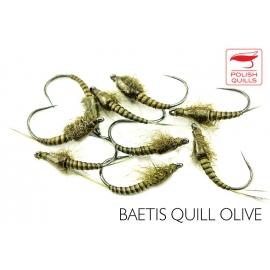 Baetis Quills Olive