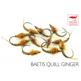 Baetis Quills Ginger