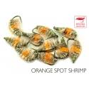 Shrimp Orange Spot