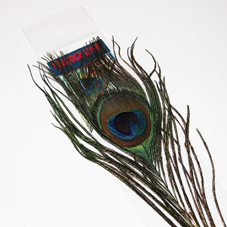 Peacock Eye / Natural 01